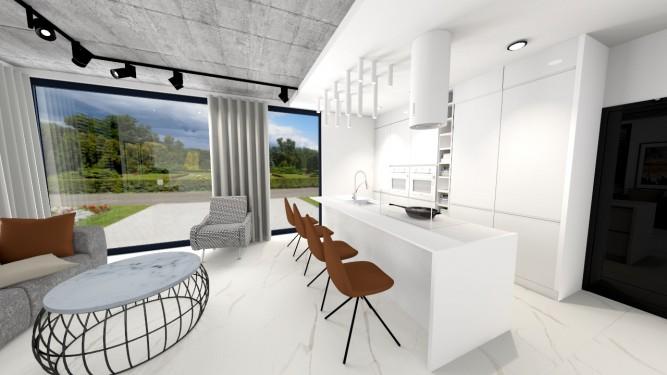 Kuchnia biała czy czarno biała - wizualizacja - Jowita Błaszczyk Jowita Błaszczyk projektowanie wnętrz